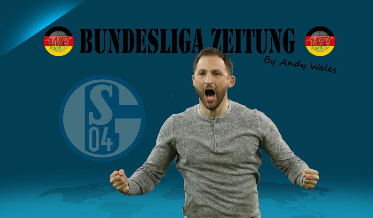 Schalke Seal Second & The Dino Are Not Yet Extinct – Bundesliga Zeitung