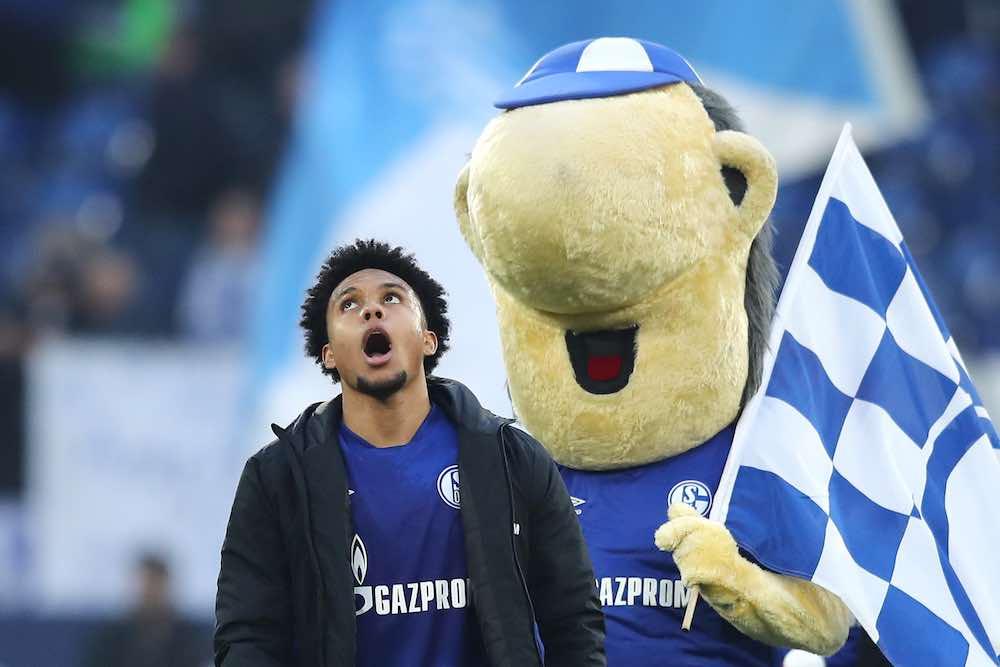 Weston McKennie Schalke Mascot